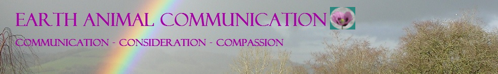 Earth Animal Communication